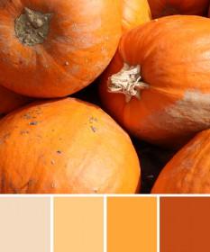 Passende Farben ins Business bringen