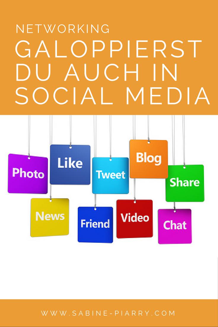 networking-schweinsgalopp-social-media-1
